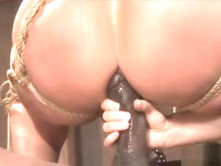 Flower Tucci Squirts Tied Up And Fucked