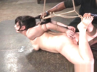 Restrained BDSM Sub Disciplined By Black Dom