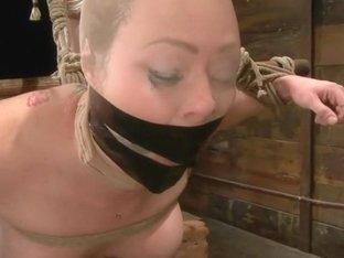 Audrey Hollander - Bitch Still Has It