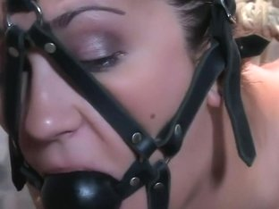 Tongue Tied & Tit Tormented Trina Michaels