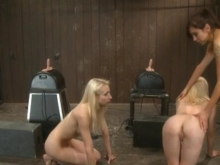 Ashley Jane, Ally Ann,princess Donna Countdown To Relaunch-12 Of 20