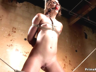 Hogtied Babe Clamped With Clothes Pins