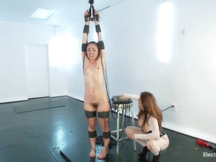 Francesca Le Kristina Rose In Kristina Rose Gets Cattle Prodded - Electrosluts