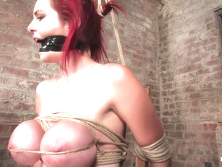 Mz Berlin In Berlin And Her Huge Monsterous, Massive Breasts Are Back For Hard Bondage At Its Best.