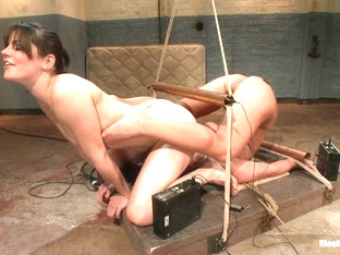 Phoenix Marie  Bobbi Starr In Big Tittied Sub Whore Phoenix Can't Get Enough Electrosex Punishment.